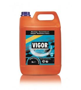 VIGOR ORIGINAL 5L