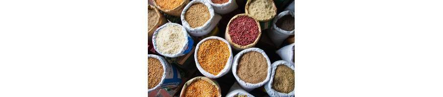 Légumes secs - Riz - Graines